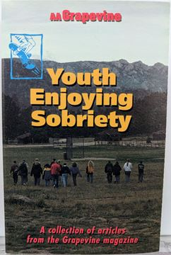 Picture of Youth Enjoying Sobriety (Cassette)