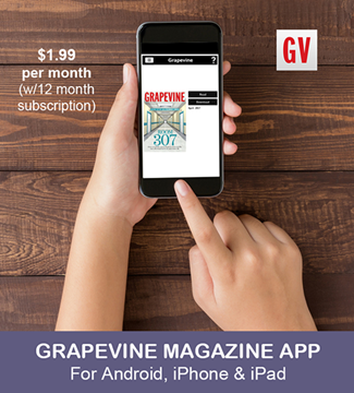 Picture of Grapevine Subscription App