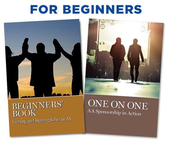 Picture of For Beginners Book Set