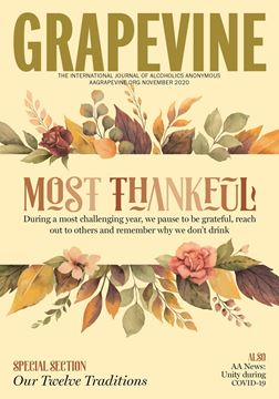 Picture of Grapevine Back Issue (November 2020)